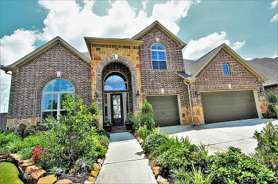 Katy Single Family Home For Sale: 2703 Carriage Hollow Lane