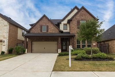 Fulshear Single Family Home For Sale: 3519 Big Hickory Court