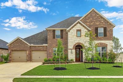 Rosenberg Single Family Home For Sale: 8215 Summer Breeze Lane
