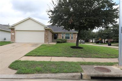 Katy Single Family Home For Sale: 6339 Lucinda Meadows Drive