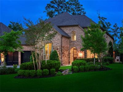 The Woodlands Single Family Home For Sale: 31 Mohawk Path Place