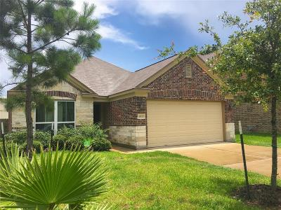 Houston Single Family Home For Sale: 18523 Windy Stone Drive