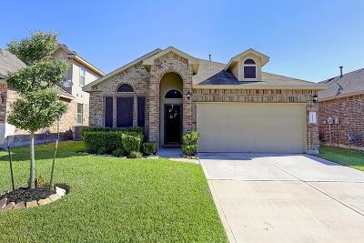 Spring Single Family Home For Sale: 23542 Stargazer Pt
