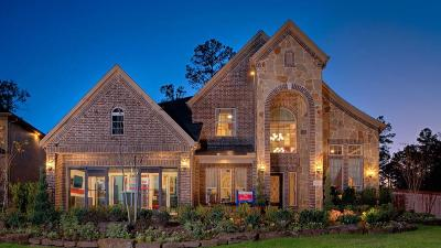 Houston Single Family Home For Sale: 13202 Walston Springs Court