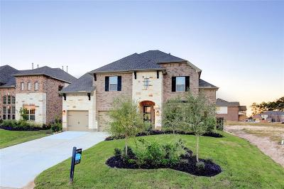 The Woodlands Single Family Home For Sale: 99 Springtime Creek