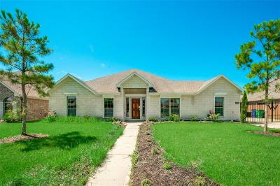 Manvel Single Family Home For Sale: 6530 Texoma Drive