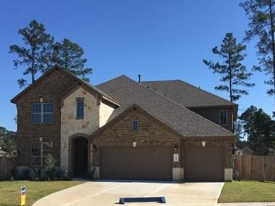 Conroe Single Family Home For Sale: 14209 S Crater Lake Court