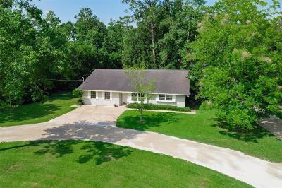Dickinson Single Family Home For Sale: 3315 Yupon Street