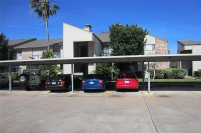 Galveston Rental For Rent: 7124 N Holiday Drive