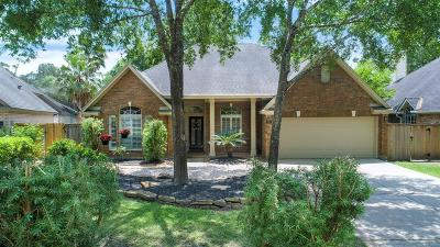 The Woodlands Single Family Home For Sale: 10 Skyland Place