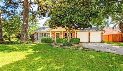 Houston Single Family Home For Sale: 14003 Kingsride Lane