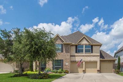 Friendswood Single Family Home For Sale: 1218 Abigail Lane