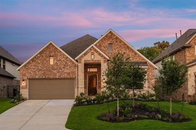 The Woodlands Single Family Home For Sale: 75 Wyatt Oaks