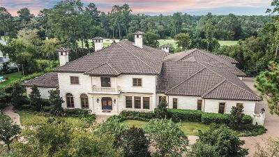 The Woodlands Single Family Home For Sale: 27 Grand Regency Circle