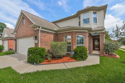 Houston Single Family Home For Sale: 2702 Yestereve Court
