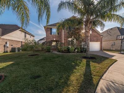 League City Single Family Home For Sale: 2531 Mango Court