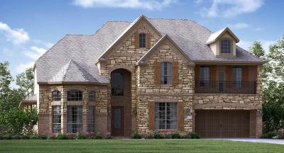 Galveston County Single Family Home For Sale: 2456 Morning Ridge Lane