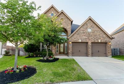 Katy Single Family Home For Sale: 29322 Crested Butte Drive
