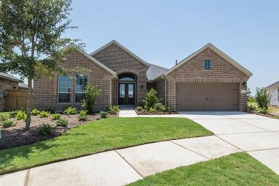 Fulshear Single Family Home For Sale: 5606 Ivory Cove