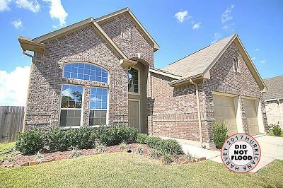 Houston Single Family Home For Sale: 14803 Burleson Bend Drive