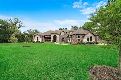 Willis Single Family Home For Sale: 1603 Topaz Trl
