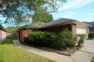 Tomball Single Family Home For Sale: 12035 Westlock Drive