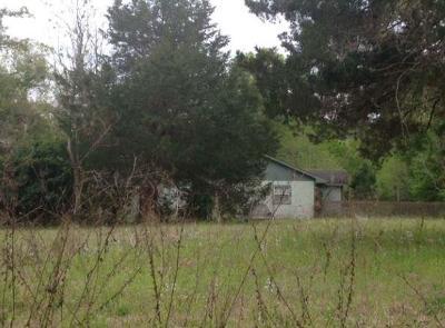 Liberty County Single Family Home For Sale: 204 Silcox Lane