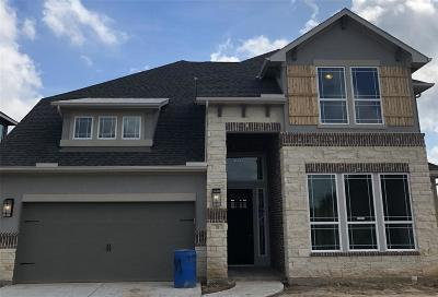 The Woodlands Single Family Home For Sale: 38 Botanical Vista Drive