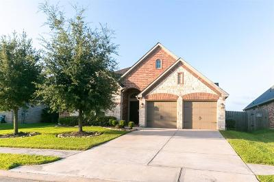 Pearland Single Family Home For Sale: 14112 Timber Ridge Drive