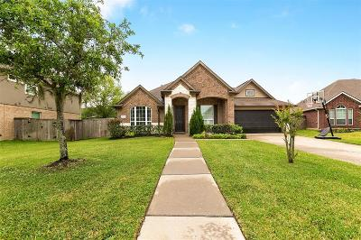 Pearland Single Family Home For Sale: 2204 Hannah Creek Court