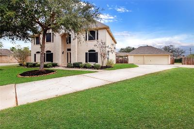 Friendswood Single Family Home For Sale: 205 Falcon Lake Circle