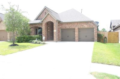 Pearland Single Family Home For Sale: 13934 Palm Ridge Lane