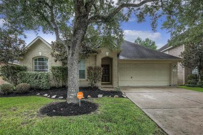 Pearland Single Family Home For Sale: 3623 Kennedy Drive