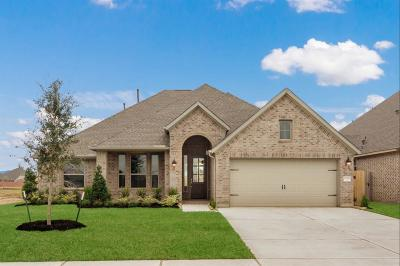 League City Single Family Home For Sale: 1708 Hartford Mills Lane
