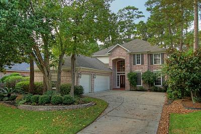 The Woodlands Single Family Home For Sale: 38 N Castlegreen Circle