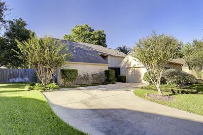 Houston Single Family Home For Sale: 1602 Big Lake Drive