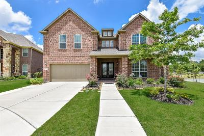 Pearland Single Family Home For Sale: 7403 Woodward Springs Drive Drive