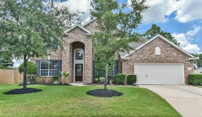 Tomball Single Family Home For Sale: 12702 Dylan Hills Lane