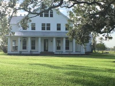 Angleton Single Family Home For Sale: 403 Lakeview Drive