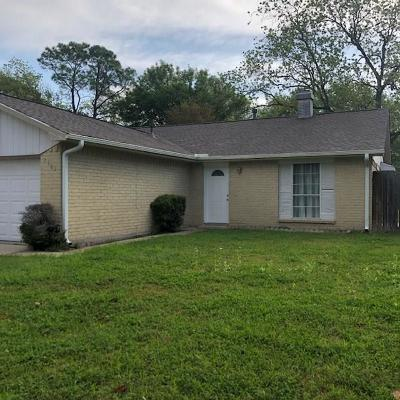 Fort Bend County Single Family Home For Sale: 7507 Mesones Drive