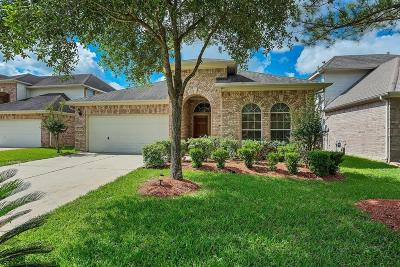 Houston Single Family Home For Sale: 17311 Danbury Bridge Drive