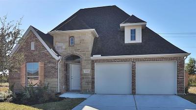 League City Single Family Home For Sale: 2725 Bethel Springs Lane