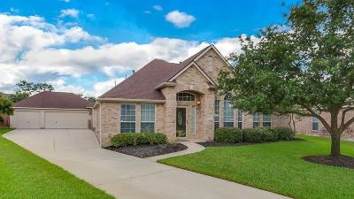 Tomball Single Family Home For Sale: 18603 Peralta Hill Lane