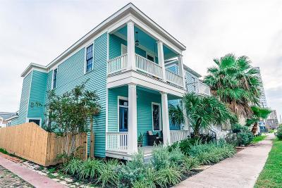 Galveston Single Family Home For Sale: 1619 Mechanic Street