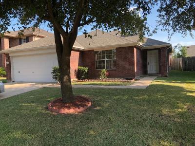 Houston Single Family Home For Sale: 9614 Lasbury Drive