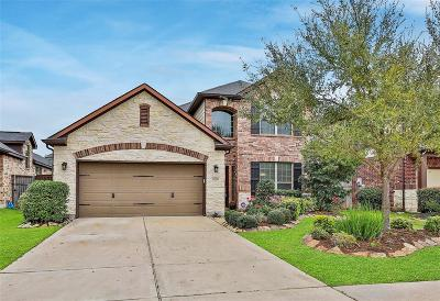 Fulshear Single Family Home For Sale: 6219 Holly Oaks Court