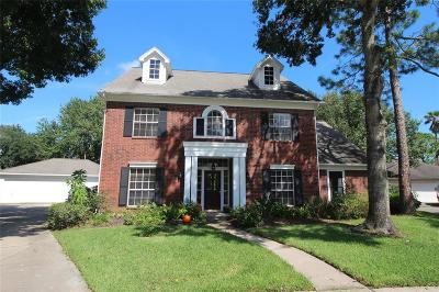 Houston Single Family Home For Sale: 2006 Valley Dale Court