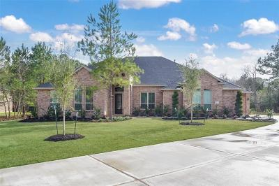 Tomball Single Family Home For Sale: 12927 Mossy Shore