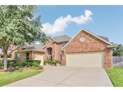 Katy Single Family Home For Sale: 9815 Saxon Glen Lane