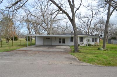 Brazoria Single Family Home For Sale: 2508 County Road 349